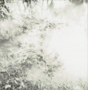 Photo (10)-001
